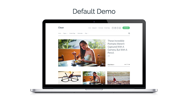 Clean WordPress theme-Demo