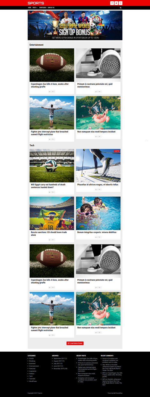 Bridge WordPress Theme is a cleverly designed theme that is suitable for use in multiple niches